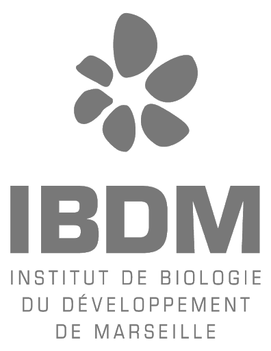 Prudhomme - Research Lab - Development and evolution of morphology and behavior